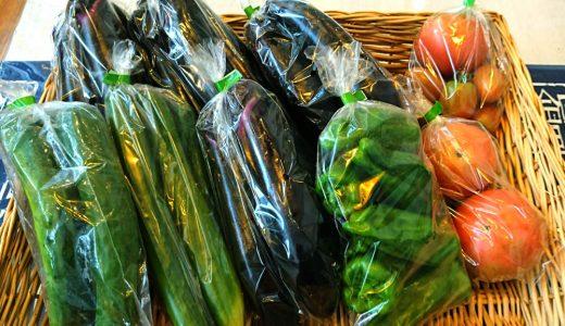 いらっ茶いわたらいの店頭に地元の夏野菜が並んでいます。