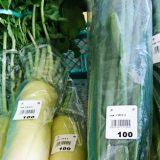 いらっ茶いわたらいに地元の冬野菜が揃ってます