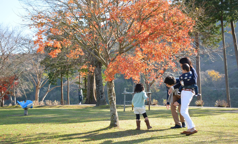 度会の風景 紅葉の宮リバーパーク